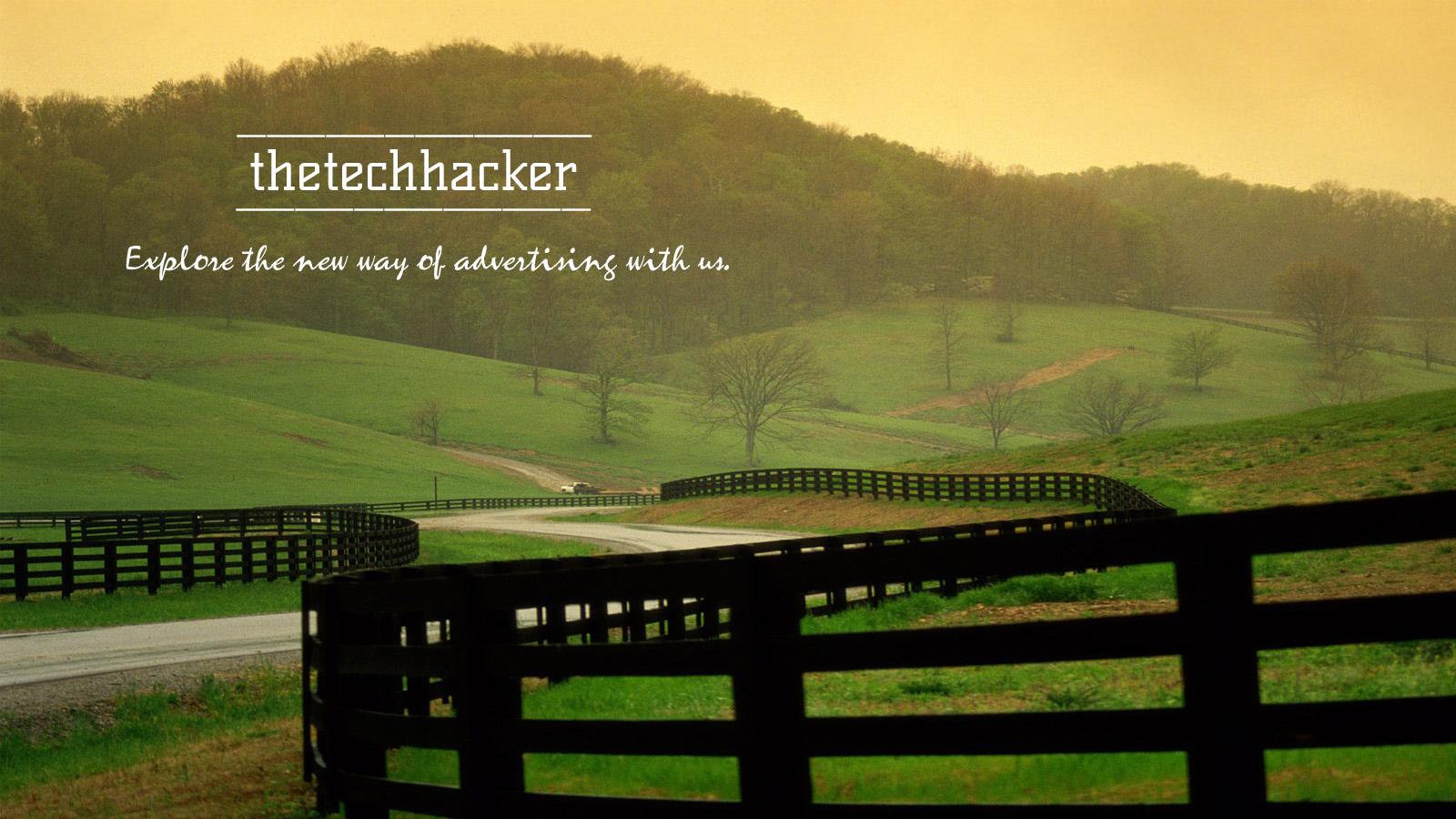 Explore New Ways of Advertising on thetechhacker