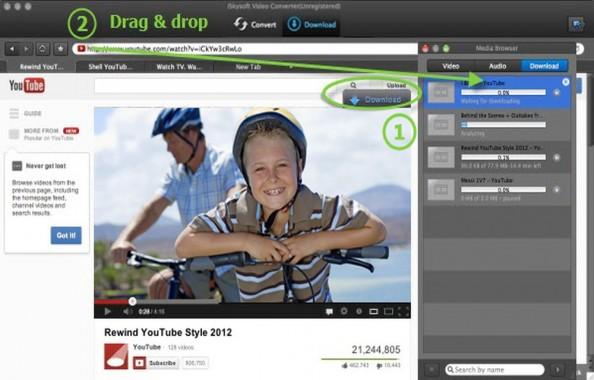 iSkysoft Video Downloading