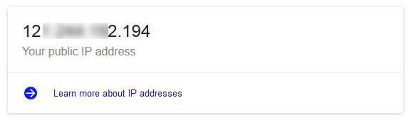 google-ip-result