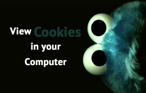 view-cookies-in-your-computer