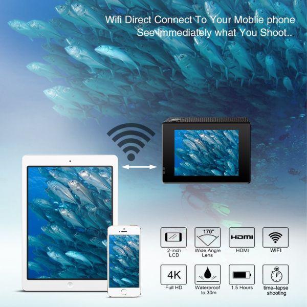 Acekool Wireless Connectivity