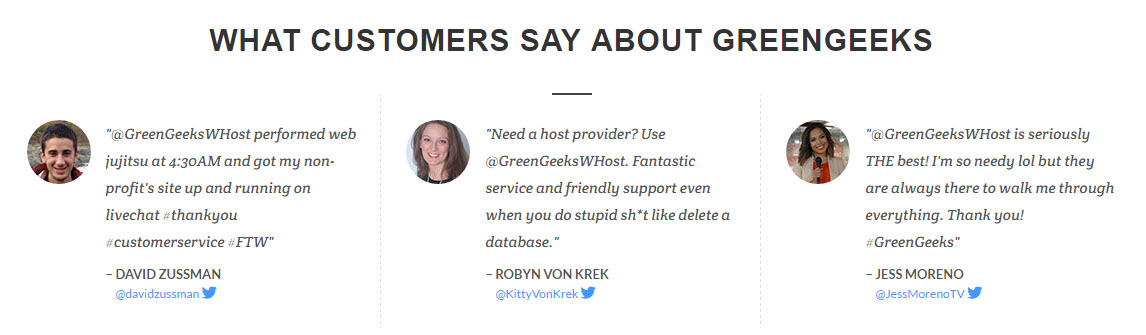 GreenGeeks Customer Reviews