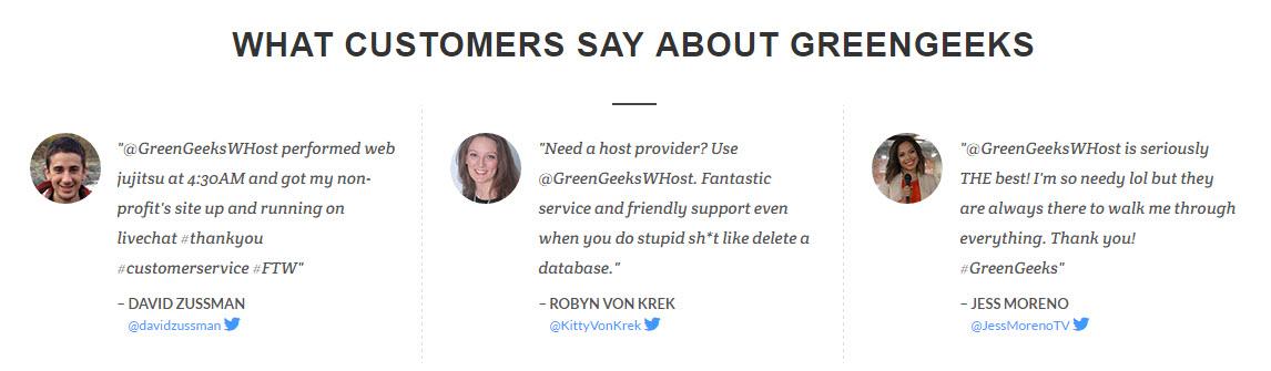 GreenGeeks Customer Reviews