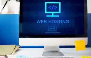 Professional Web Hosting for Your Business