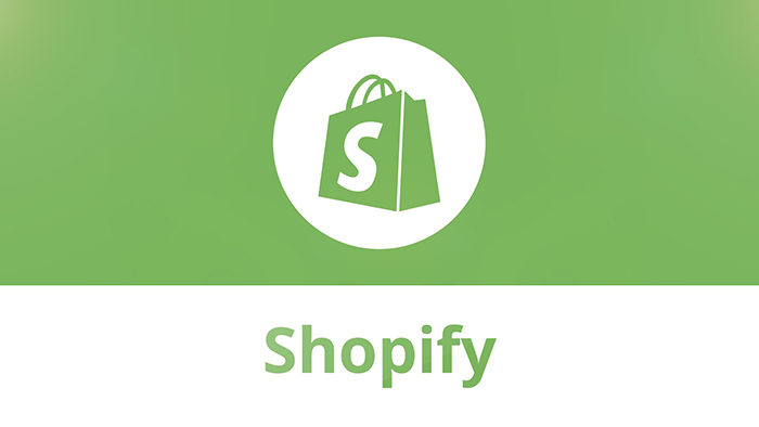 How you could earn more with Shopify Subscription