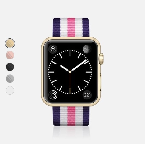 Casetify Stripe White Band