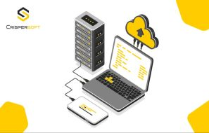 Why the Ukrainian software development company is the best choice