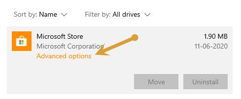 Microsoft Store Advanced Options