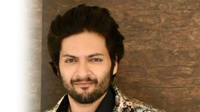 Ali Fazal: Many told me to focus on films and not take up work on the web but I refused to do so – bollywood