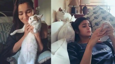 Alia Bhatt, Soni Razdan mourn death of their cat Sheeba, Pooja Bhatt, Riddhima Kapoor offer condolences – bollywood