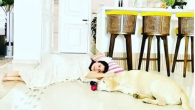 Anushka Sharma shares cute pic with her pet, says they are the 'serial chillers in the house'. See here – bollywood