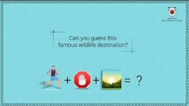 Can you solve these puzzles shared by Rajasthan Tourism on Twitter? – it s viral