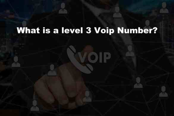 What is a level 3 Voip Number?