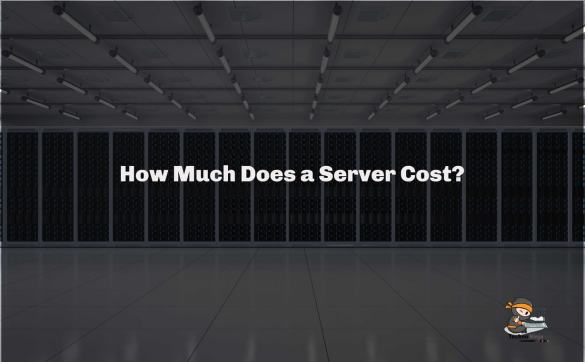How Much Does a Server Cost?