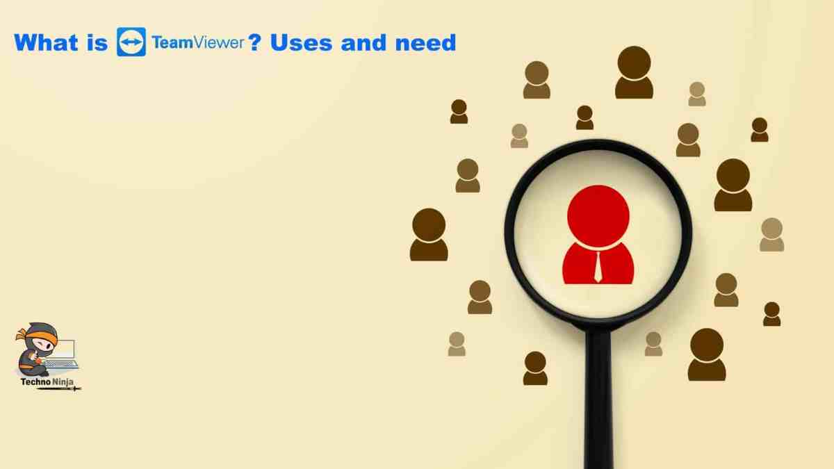 What is TeamViewer? Uses and need