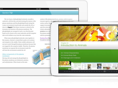 Apple's iPad Wins Consumer Satisfaction Survey in South Korea
