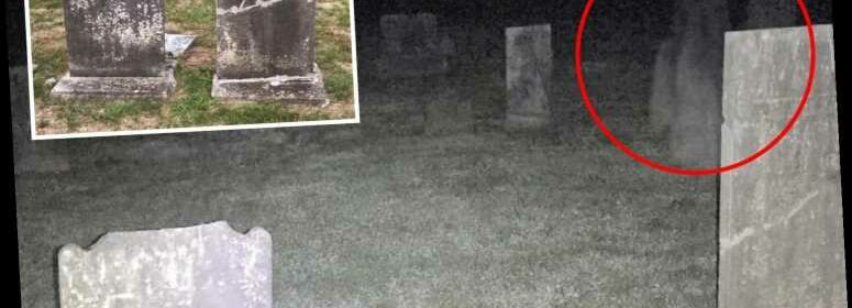 Cemetery Ghoul, South Carolina Body, Honk Kong Haunted Sales, and Save Bigfoot Please