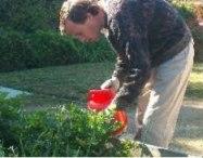 Horticulture Classes