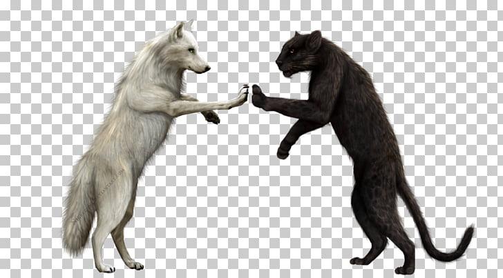 Coerced Transformation, Sky's Werewolf Fraternity Fun