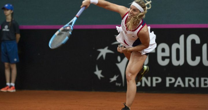 Dominika Cibulkova leaves competition in Stuttgart