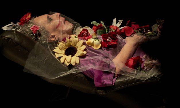 The Life and Death of Maria Alice Vergueiro
