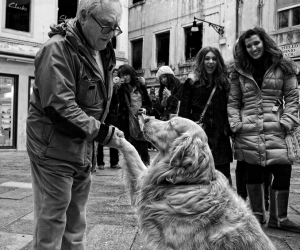 Pleased to Meet You by Mario Pignotti