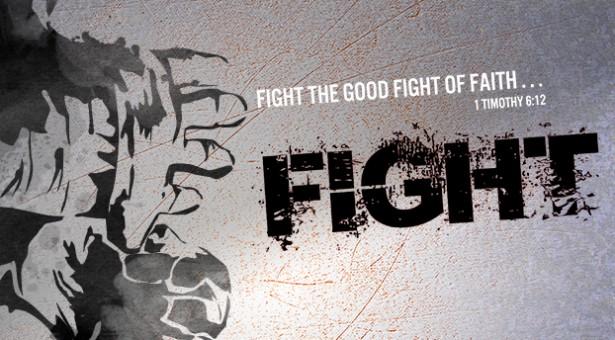fight_series-615x340