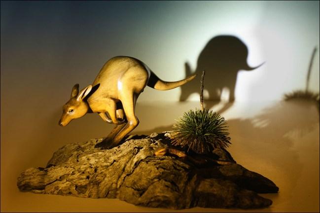 Kangaroo carving
