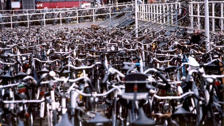 dutch-bikes-1462233