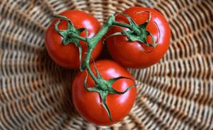 tomatoes ban in Nigeria