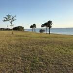 Picnic Island Park - Tampa, Fl