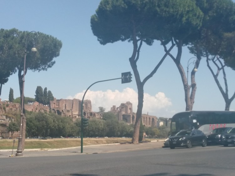 Stone pine trees in front of some ancient ruins on a street.