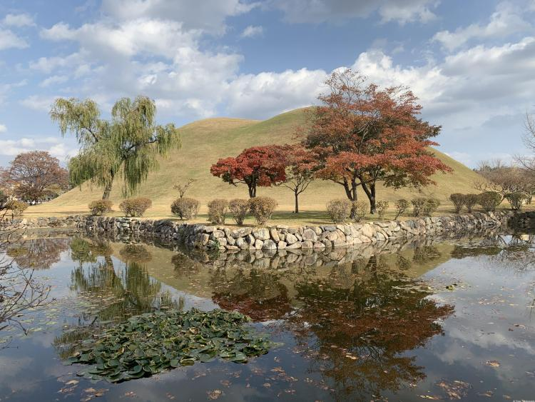 Gyeongju Travel Guide photo of lotus covered pond in front of fall trees in front of a double tomb mound. The red trees reflect into the water.