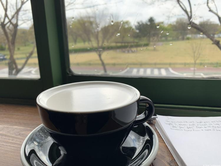 a navy large teacup on a matching saucer filled with white foam. It sits next to a notebook on a wooden counter with a view out green framed windows to the tomb mound park on a rainy day.