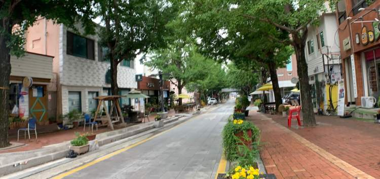 a cafe street in Suncheon travel guide, red brick paths on either side of a paved road, one side has picnic tables and the other a row of flowers, some blooming yellow.