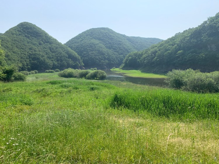 Go in Korea dinosaur landscape near the petroglyphs