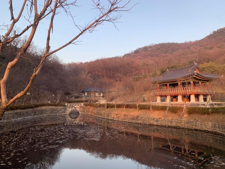 A reflective pond with a pavilion beside it