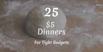 25 $5 dinners