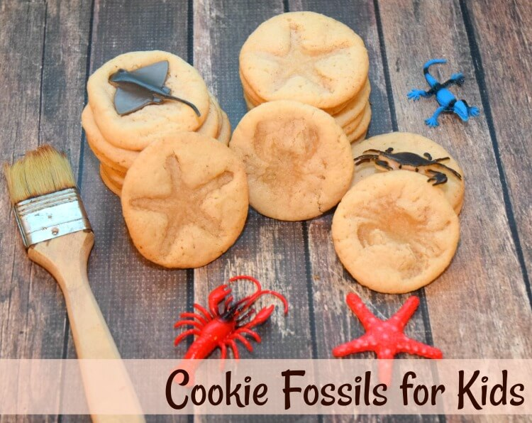Cookie Fossils for kids to make
