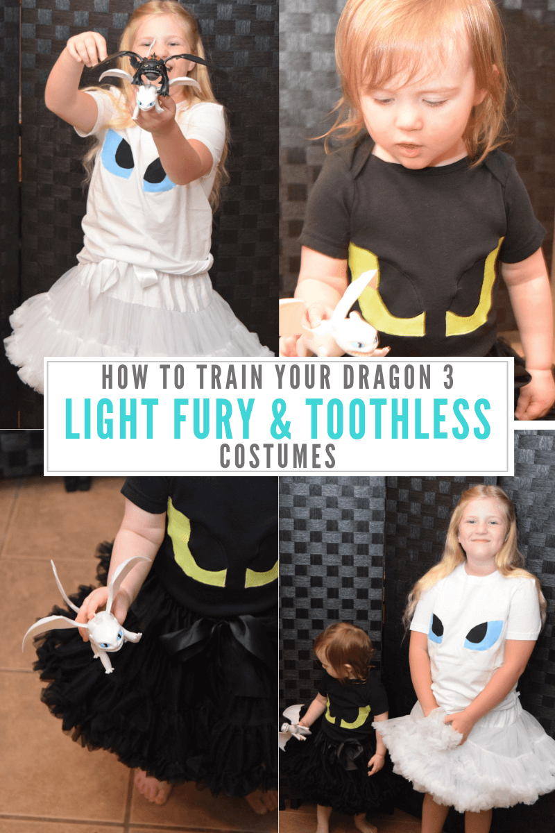 How to Train Your Dragon 3 - Light Fury and Toothless Costumes compilation