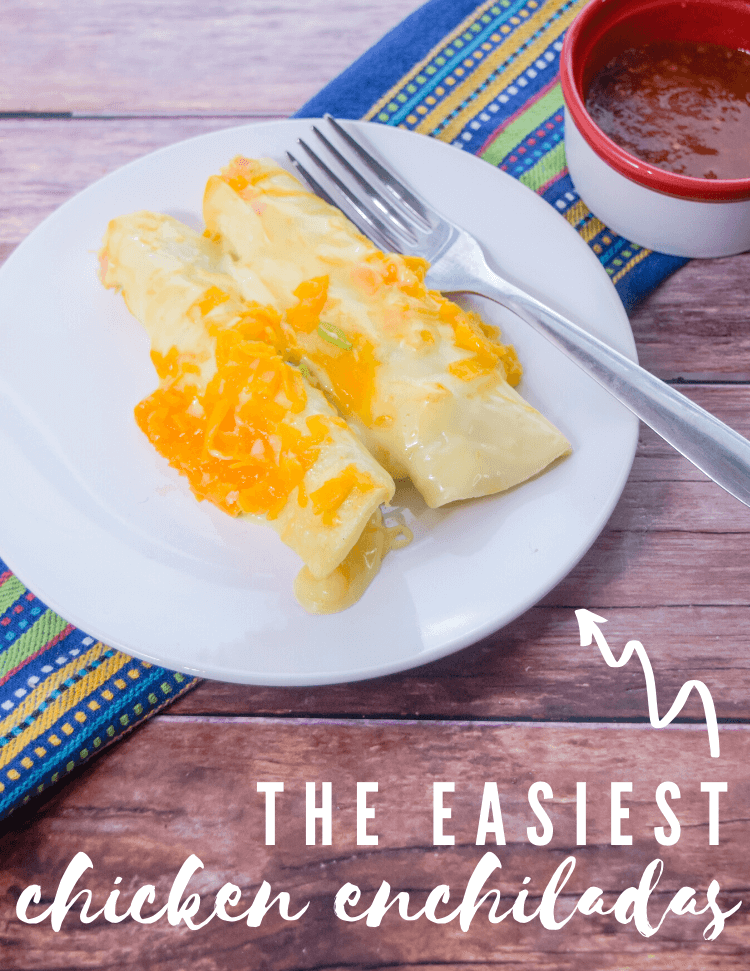 The Easiest Chicken Enchiladas covered with sauce and cheese and next to a cup of salsa.