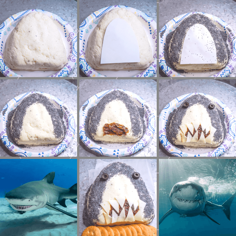 Step by step process images collage to make a Shark Cheese Ball