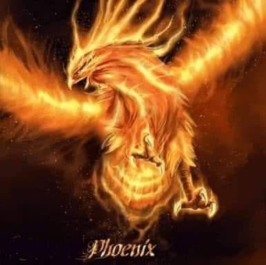 Phoenix @ The Toasted Monkey
