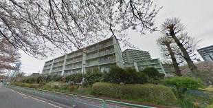 Toei Minami Tanaka Apartment highway cherry trees