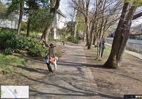 235 tree-lined path