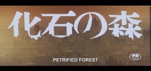The Petrified Forest 1973 opening smoggy Tokyo titles
