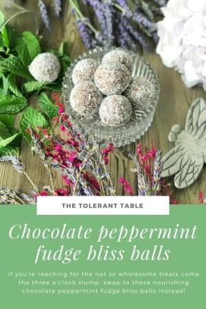 Chocolate Peppermint Fudge Bliss Balls Pinterest 2
