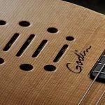 Godin Guitars: Multiac, LGX-SA, and the Redline Series
