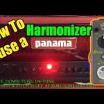Panama Fuego & the Donner Grey Pitch Harmonizer!