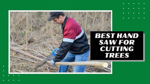 best hand saw for cutting down trees
